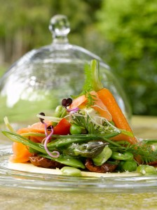 tarte-jeunes-légumes1ok